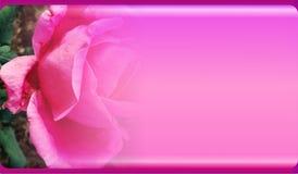 Calibre abstrait de fond de fleur pour le site Web, bannière, carte de visite professionnelle de visite, invitation Conception ab image stock