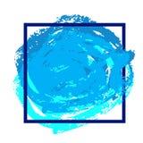 Calibre bleu d'insecte Photographie stock libre de droits