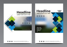 Calibre bleu de conception d'insecte de rapport annuel de brochure Photos stock