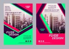 Calibre coloré de conception d'insecte Conception de disposition de brochure Photos stock