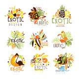 Calibre coloré exotique Logo Series, pochoirs tirés par la main de conception graphique de vacances d'été de vecteur illustration libre de droits