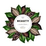 Calibre cosmétique d'emballage Produit de beauté d'huile de graines de cacao Illustration tirée par la main de vecteur Nourriture illustration de vecteur