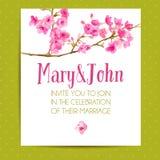 Calibre d'invitation de mariage avec des fleurs de Sakura Images libres de droits