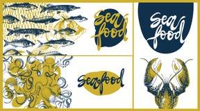 Calibre de conception de vecteur de fruits de mer, bannières réglées Art linéaire tiré par la main d'illustration de vecteur de f Photos libres de droits