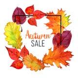 Calibre de vente d'automne avec le lettrage Autumn Leaves Conception de lettrage de vente, illustration d'aquarelle Photo libre de droits