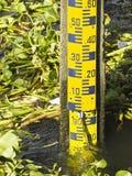 Calibre do pessoal no rio Foto de Stock Royalty Free