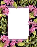 Calibre floral exotique d'invitation de mariage Sauvegardez la carte de datte illustration de vecteur