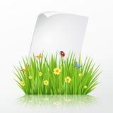 Calibre frais de cadre d'herbe verte de ressort avec courber le papier de page blanche Photos stock