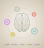 Calibre infographic de cerveau Images stock