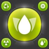 Calibre moderne d'icônes d'Eco de vecteur. Ensemble créatif et élégant d'interface. Conception d'illustration de concept du vecteu Illustration de Vecteur