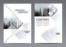 Calibre noir et blanc de conception de disposition de brochure Fond moderne de présentation de couverture de tract d'insecte de r Image libre de droits