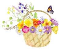 Calibre peint à la main de clipart de maquette d'aquarelle des fleurs sauvages illustration stock