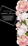 Calibre pour des cartes de voeux, décorations de mariage, ventes Photo stock