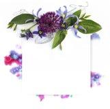 Calibre pour la conception d'invitation avec la découpe d'éclaboussure d'aquarelle et de fleur fraîche et d'encre Photographie stock libre de droits