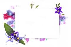 Calibre pour la conception d'invitation avec la découpe d'éclaboussure d'aquarelle et de fleur fraîche et d'encre Photographie stock