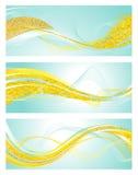 Calibres de bannière de menthe et d'or Images stock