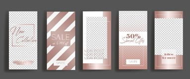 Calibres de cadre d'histoires d'Instagram Maquette pour la bannière sociale de médias conception rose de disposition d'or illustration stock