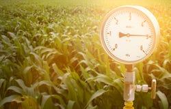 Calibres de pressão mecânicos Instrumentos tradicionais para a pressão de medição Imagens de Stock Royalty Free