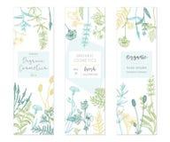 Calibres floraux de vecteur illustration libre de droits