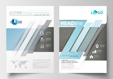 Calibres pour la brochure, magazine, insecte, livret Calibre de couverture, disposition plate dans la taille A4 Recherche médical Photos stock
