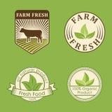 Calibres sains de nourriture de bio eco organique de ferme et couleur verte de vegan de vintage pour le menu de restaurant ou le  Image libre de droits