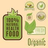 Calibres sains de nourriture de bio eco organique de ferme et couleur verte de vegan de vintage pour le menu de restaurant ou le  Photo stock