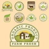Calibres sains de nourriture de bio eco organique de ferme et couleur verte de vegan de vintage pour le menu de restaurant ou le  Photographie stock libre de droits