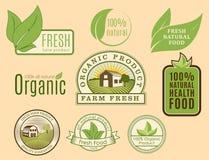 Calibres sains de nourriture de bio eco organique de ferme et couleur verte de vegan de vintage pour le menu de restaurant ou le  Image stock