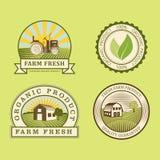 Calibres sains de nourriture de bio eco organique de ferme et couleur verte de vegan de vintage pour le menu de restaurant ou le  Photo libre de droits