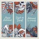 Calibres verticaux de conception de partie de Halloween Milieux floraux d'anatomie de vintage Illustration de vecteur Photos libres de droits