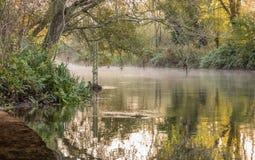 Calibro di profondità di acqua in fiume sulla mattina nebbiosa fredda Immagini Stock Libere da Diritti