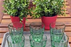 Calici di vetro verdi sui precedenti delle piante Utensili da vetro verde immagini stock