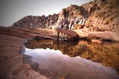 Calico Basin Stock Image