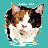 Calico Cat Painting Poster Royalty Free Stock Photo