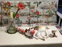 A calico cat sleeping next to 4 ceramic cows stock photography