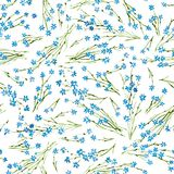 Calico watercolor pattern. Royalty Free Stock Photo