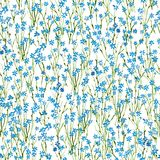 Calico watercolor pattern. Royalty Free Stock Images