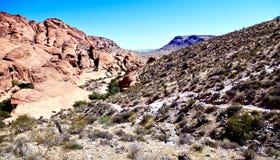 Calicoheuvels, het Rode Gebied van het Rotsbehoud, Zuidelijk Nevada, de V.S. stock fotografie