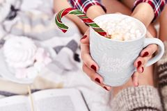 Caliente dulce de la Feliz Navidad de la mañana de la bebida morena hermosa de la mujer Imagenes de archivo