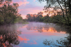 Caliente el cielo rosado sobre el río de Narew, Polonia. Fotografía de archivo