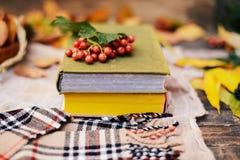 Caliente la bufanda hecha punto y un libro en una bandeja de madera Caída pacífica franco Imagen de archivo