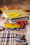 Caliente la bufanda hecha punto y un libro en una bandeja de madera Caída pacífica franco Foto de archivo