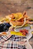 Caliente la bufanda hecha punto y un libro en una bandeja de madera Caída pacífica franco Fotos de archivo libres de regalías