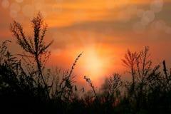 Caliente la puesta del sol dramática con los orbes esféricos brillantes de la pendiente Imágenes de archivo libres de regalías