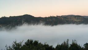 Califórnia ajardina o fundo da natureza Nuvens lentamente de enchimento nas montanhas névoa video estoque