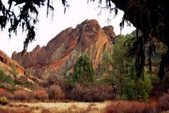 Califórnia colorida Fotos de Stock Royalty Free