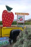 Californië: de organische tribune van het aardbeilandbouwbedrijf Stock Foto