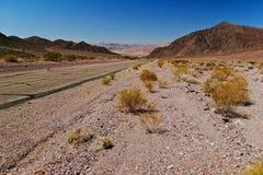 california śmierci krajobraz nieżywi usa dolinny zdjęcia stock