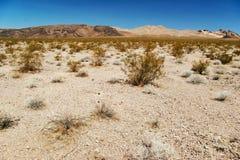 california śmierci krajobraz nieżywi usa dolinny obrazy stock