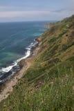california прибрежный Стоковое Изображение